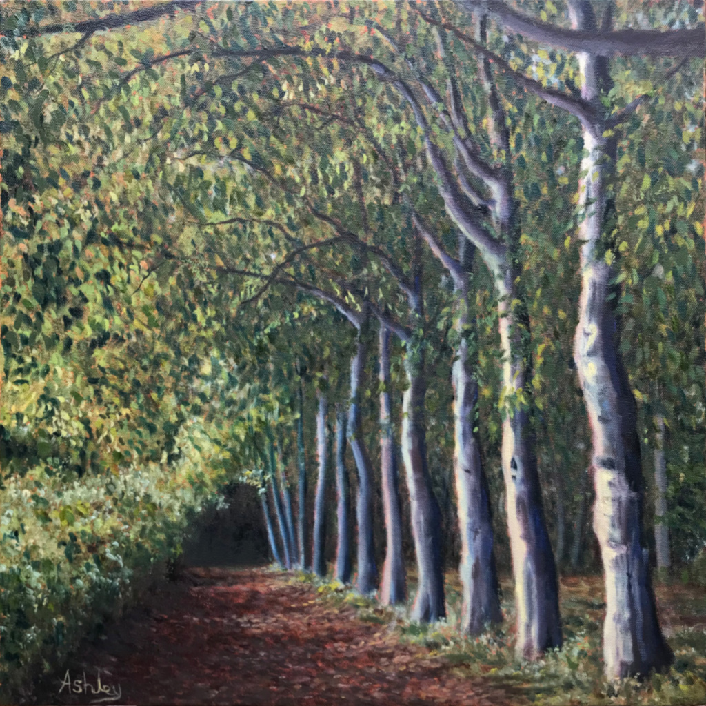 Wandlebury beech tree path - oil painting