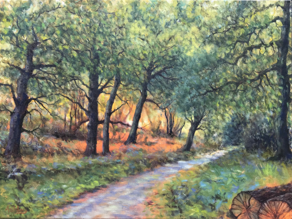 Wiveton Wood oil on canvas